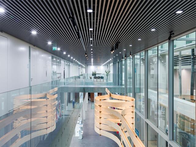 potolok-v-ofise-krasivye-foto потолок в офисе - 15 2 - 20 красивых решений отделки потолка для офиса