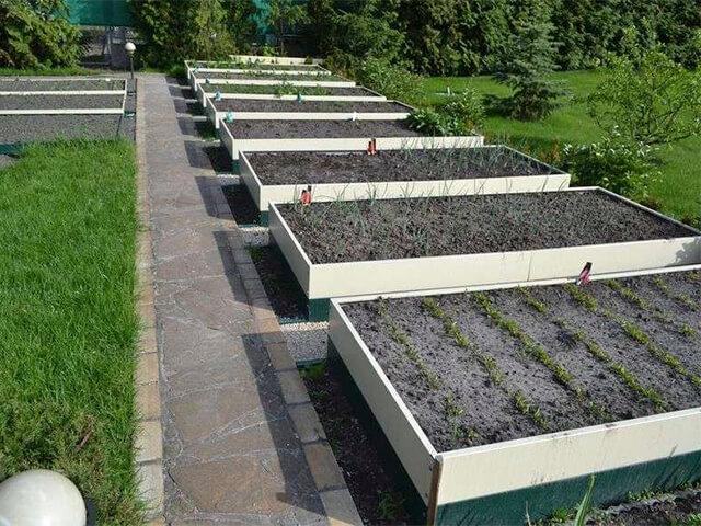 vusokie-gryadki высокие грядки - 33 1 - Высокие грядки: оптимальное решение для Вашего огорода