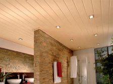 панель потолочная - 34 224x168 - Потолочные панели: от стекла до металла