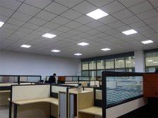 панель потолочная - 39 224x168 - Потолочные панели: от стекла до металла
