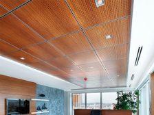 панель потолочная - 7 1 224x168 - Потолочные панели: от стекла до металла