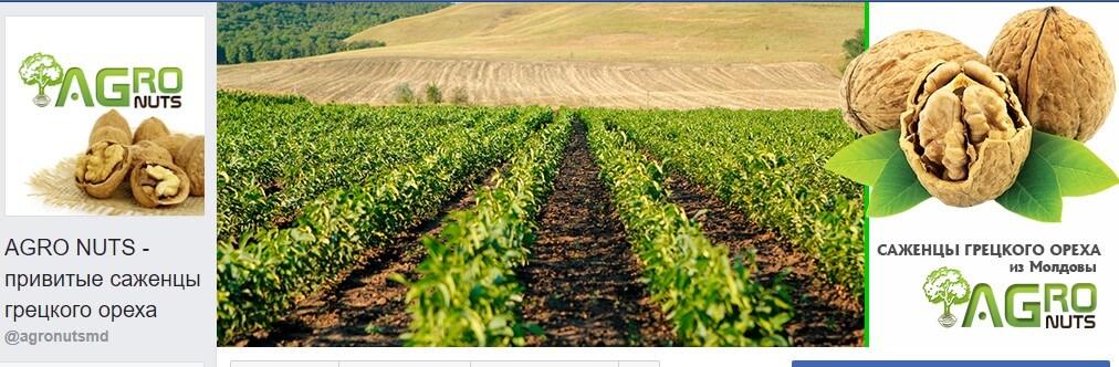 agrobiznes-v-sotsialnyih-setyah аграрный бизнес в facebook - Screenshot 1 - Почему аграрный бизнес должен иметь свою страницу в Facebook?
