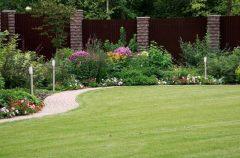 паркан - 2 6 240x158 - Огородження й рослини: що посадити вздовж паркану?