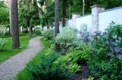 паркан - 4 5 240x158 - Огородження й рослини: що посадити вздовж паркану?