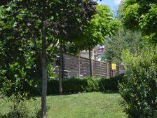 забор - DSC 0240 1 224x168 - Ограждения и растения: что посадить вдоль забора?