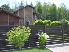 забор - DSC 0255 1 224x168 - Ограждения и растения: что посадить вдоль забора?