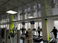 потолки для спорт зала - 2 224x168 - Подвесной потолок для спортзала, фитнес-клуба