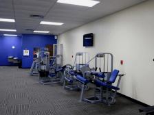 потолки для спорт зала - 4 224x168 - Подвесной потолок для спортзала, фитнес-клуба