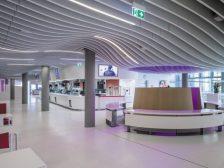 baffle ceiling 1