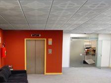 techo placa escayola decorada