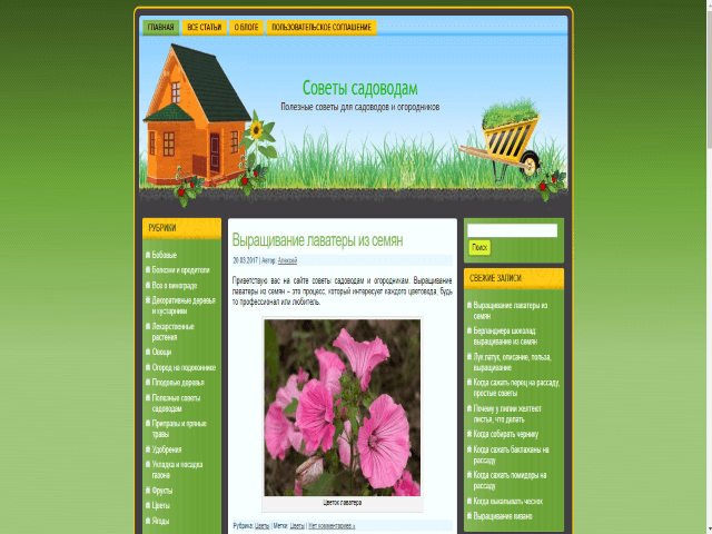 blog-ogdrodnika огород -  D0 B1 D0 BB D0 BE D0 B3  D0 BE D0 B3 D0 BE D1 80 D0 BE D0 B4 D0 BD D0 B8 D0 BA D0 B0 8 - Топ 10 Блогов для огородников