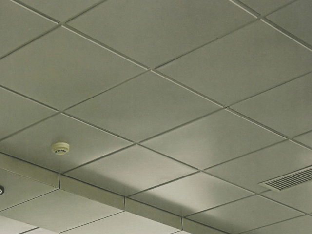 potoloznue-paneli